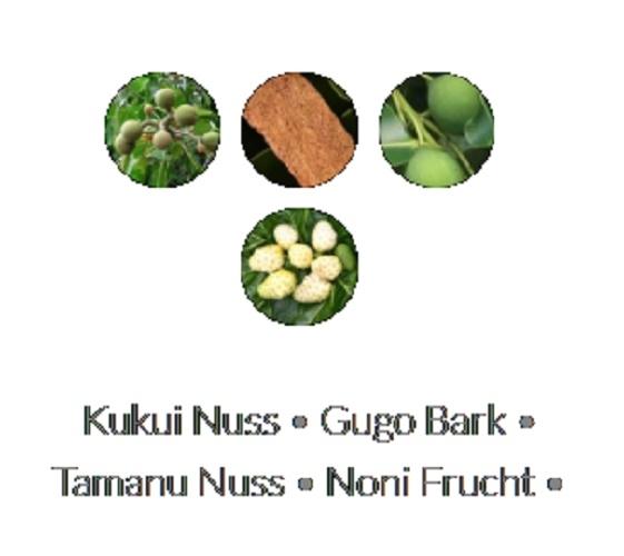 Lanza Healing Moisture Tamanu Cream Shampoo 300ml