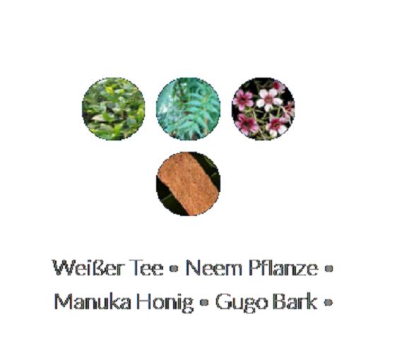 Lanza Healing Strength Manuka Honey Conditioner 250ml